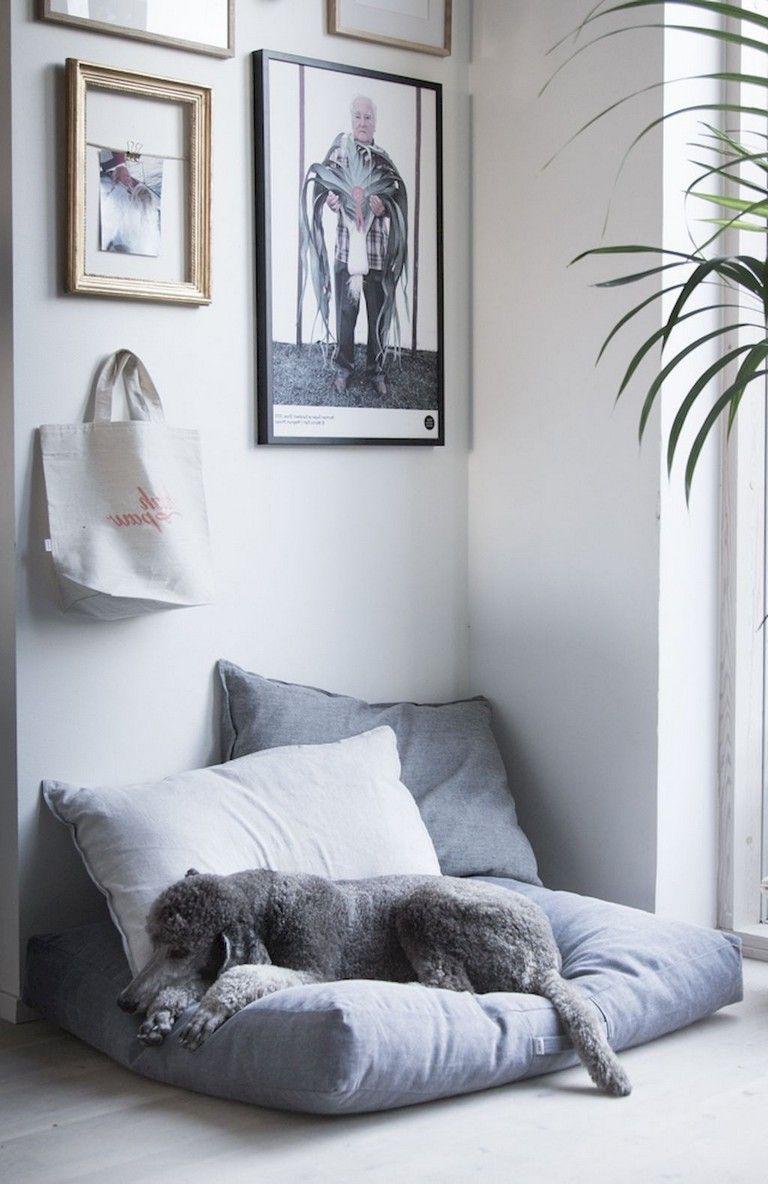 small living room decor 2018 Dog living room, Diy dog