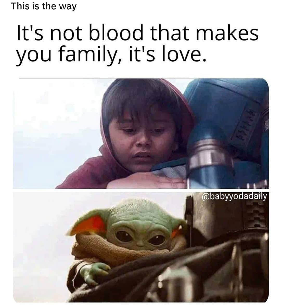 7 288 Likes 75 Comments The Real Baby Yoda Babyyodda On Instagram This Is The Way Babyyodaism Star Wars Humor Star Wars Jokes Star Wars Fandom