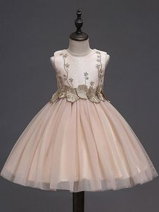 d45c51541 colorImg Baby Girl Party Dresses, Princess Tutu Dresses, Dress Anak,  Toddler Tutu,