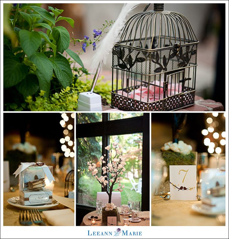 Love birds themed wedding images wedding decoration ideas love birds theme wedding reception pittsburgh wedding junglespirit Gallery