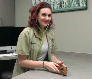 Dr Jessica Michalec Abc Animal Bird Clinic Pet Birds Jessica Vets