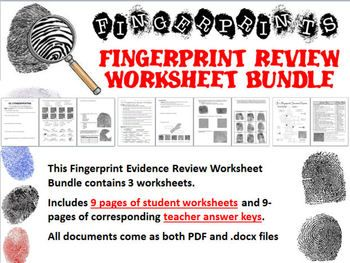 Fingerprint Evidence Review Worksheet Bundle | | Science ...