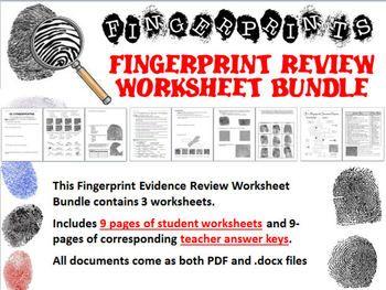 Fingerprint Evidence Review Worksheet Bundle | Worksheets