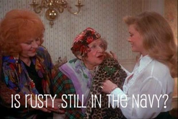 National Lampoon's Christmas Vacation 25 Funny Pics