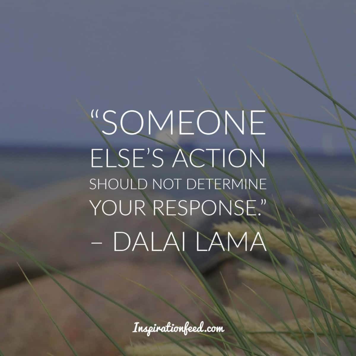 30 Dalai Lama Quotes On Compassion Peace And Life Dalai Lama