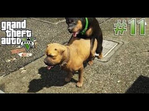 How to Complete The GTA5 11th mission (CHOP) FULL HD