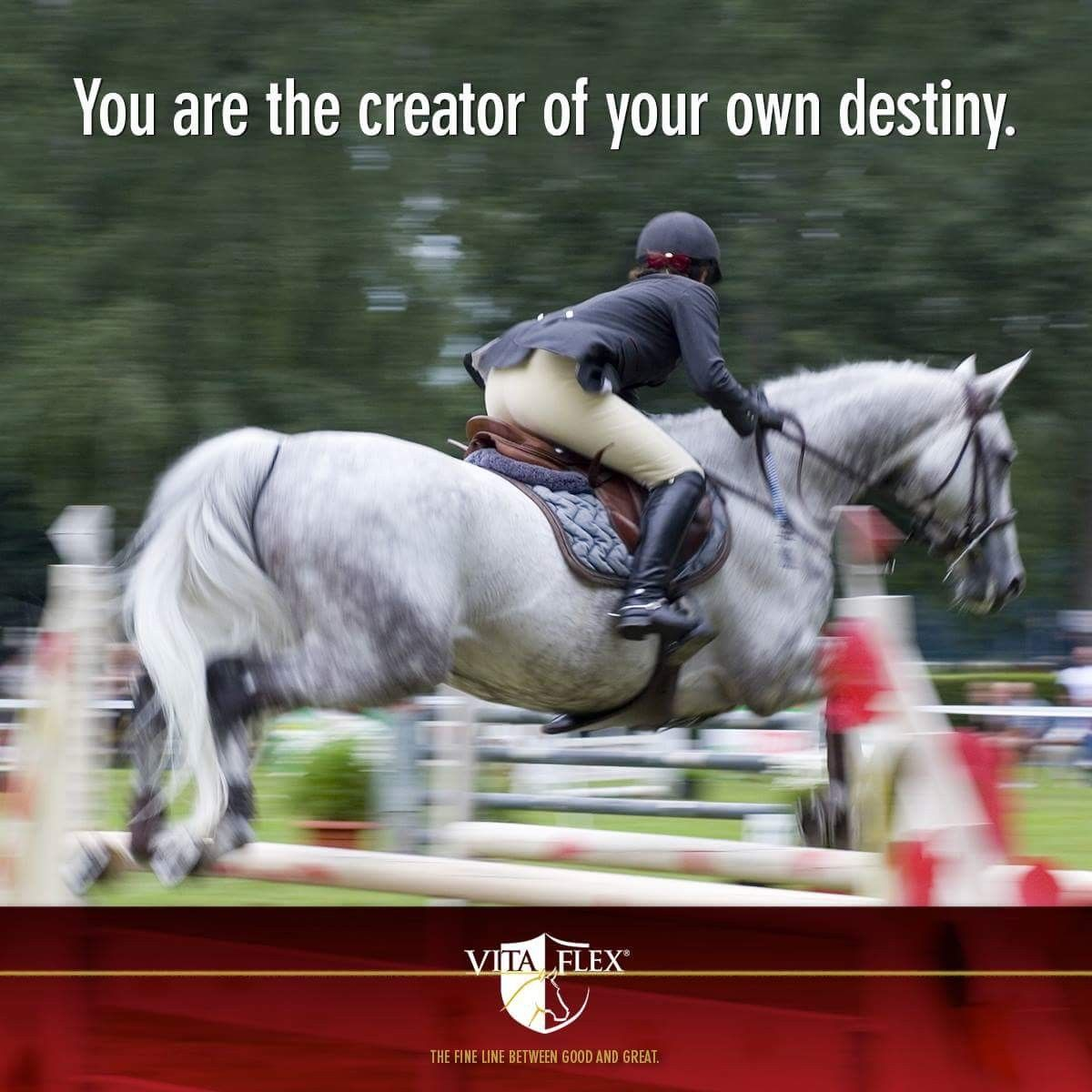 Pin by Shannon Quick on Horse quotes | Inspirational words ...