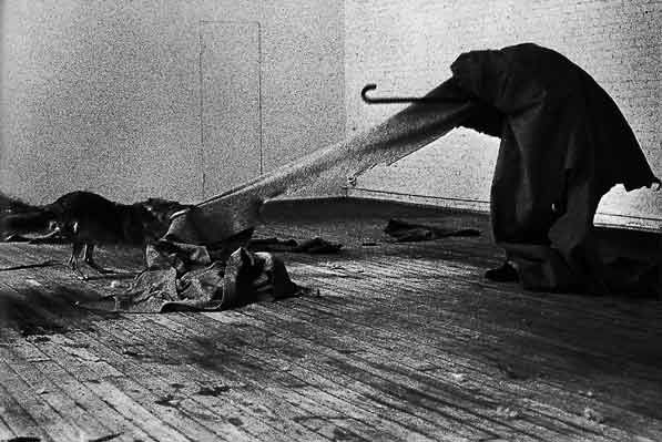 joseph beuys i like america and america likes me 1974 photographie contemporaine. Black Bedroom Furniture Sets. Home Design Ideas