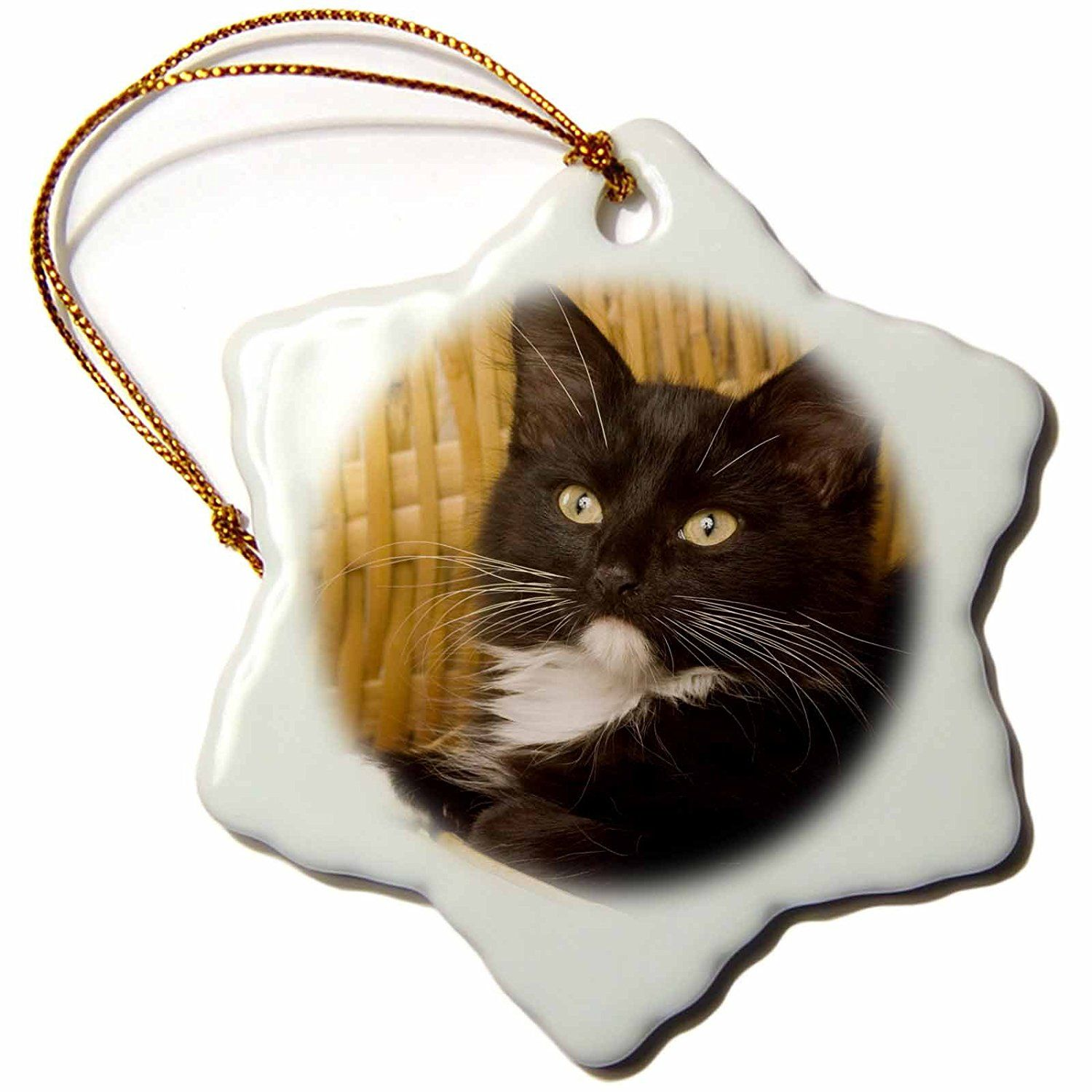 3drose Orn 84111 1 Short Haired Kitten On Hamper Lid Cats Na02 Mpr0102 Maresa Pryor Snowflake Porcelain O The Holiday Aisle Holiday Shapes Porcelain Ornaments