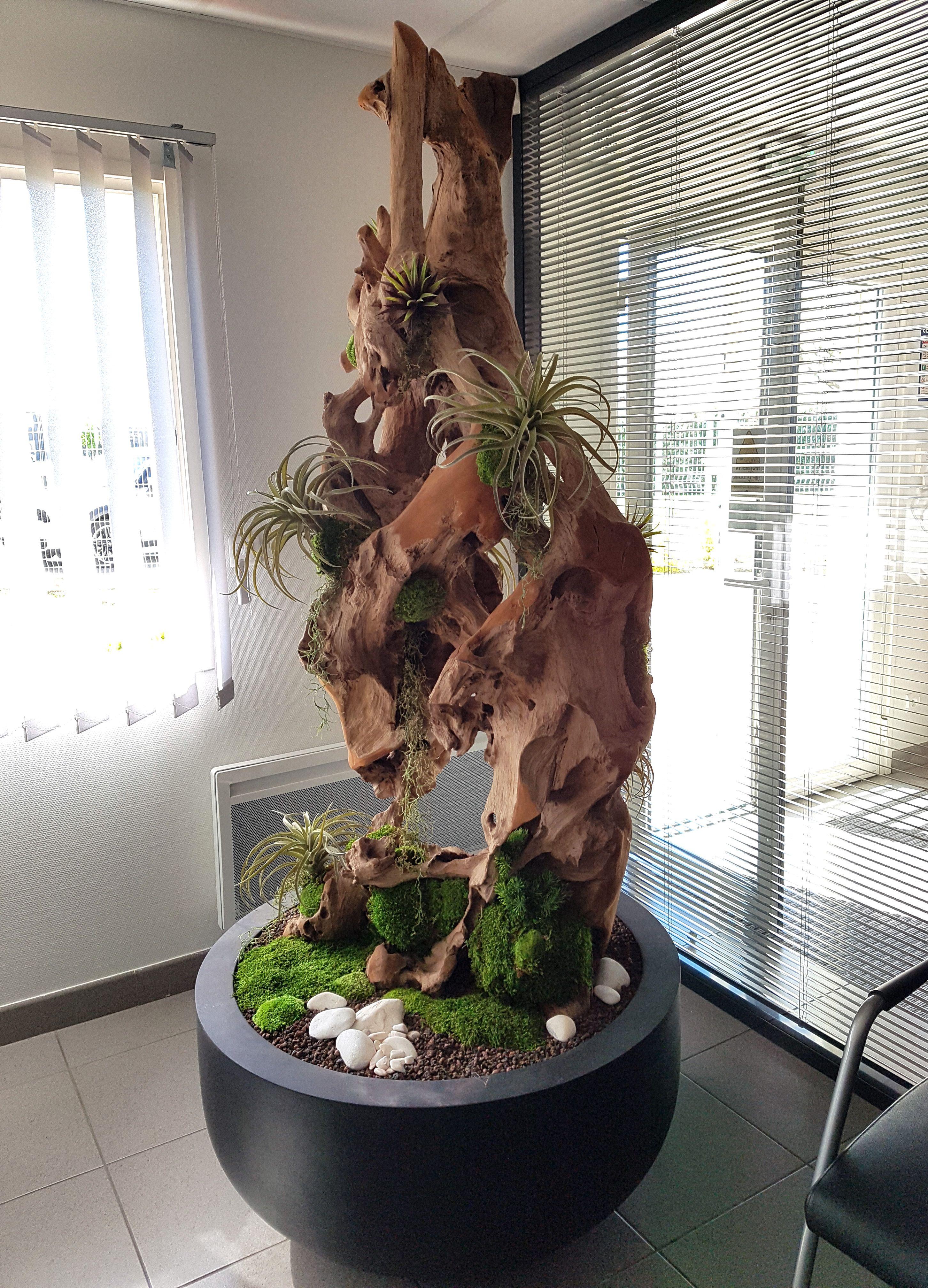 Plantes Pour Tableau Végétal Intérieur in'flor - #création #bois #aménagement #végétal intérieur