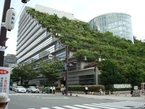 An Urban Terrace In Japan S P A C E S Vertical Garden
