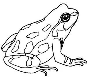 cute frog clip art black and white clipart panda free clipart rh pinterest com frog image clipart black and white frog tongue clipart black and white