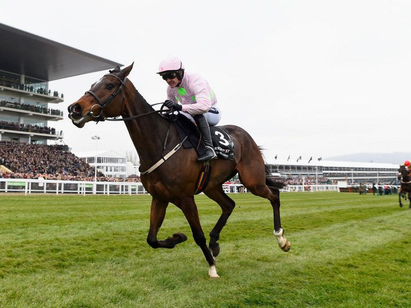 Douvan is hugely impressive under Ruby Walsh winning the