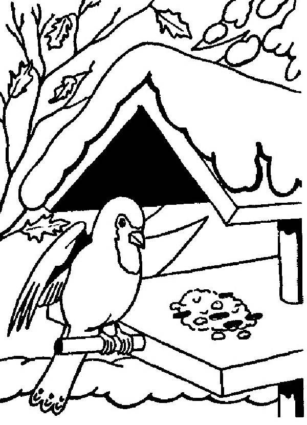 garden winter coloring pages | Disney Winter Coloring Pages | Coloring Pages Birds In ...
