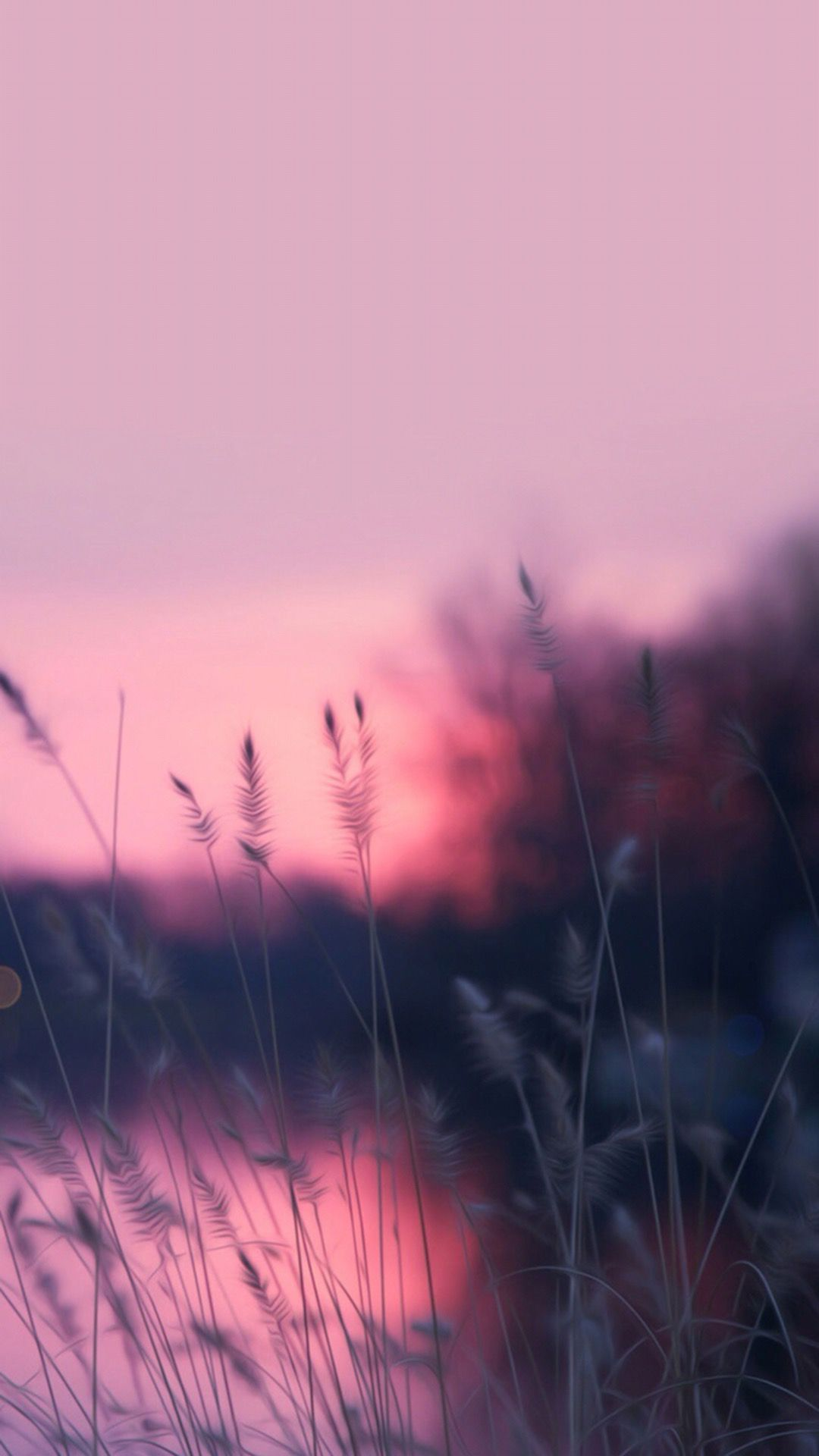 Pin de 650609 g en to live in the wonderful world iphone - Beautiful nature wallpapers for iphone ...