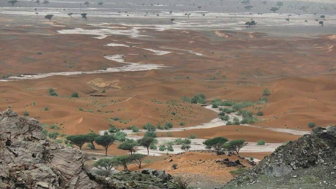 شبكة أجواء عمان صفوان محضة 2016 10 4 ﺃﺟﻮﺍﺀ ﺃﻟﺼﺒﺎﺡ ﻟﺤﻈﺎﺕ ﺭﺃﺋﻌﮧ ﺗﺮﻯ ﻓﻴﮩﺂ ﺁﻟﺠﻤﺎﻝ ﺑﺸﻜﻞ ﻣﺨﺘﻠﻒ ﺗﺤﺘﺂﺝ ﻣﻨﻚ ﻓﻘﻂ ص Instagram Natural Landmarks Instagram Posts