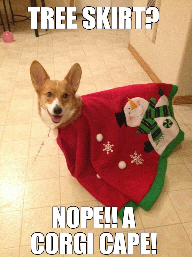 Super Christmas funny, memes