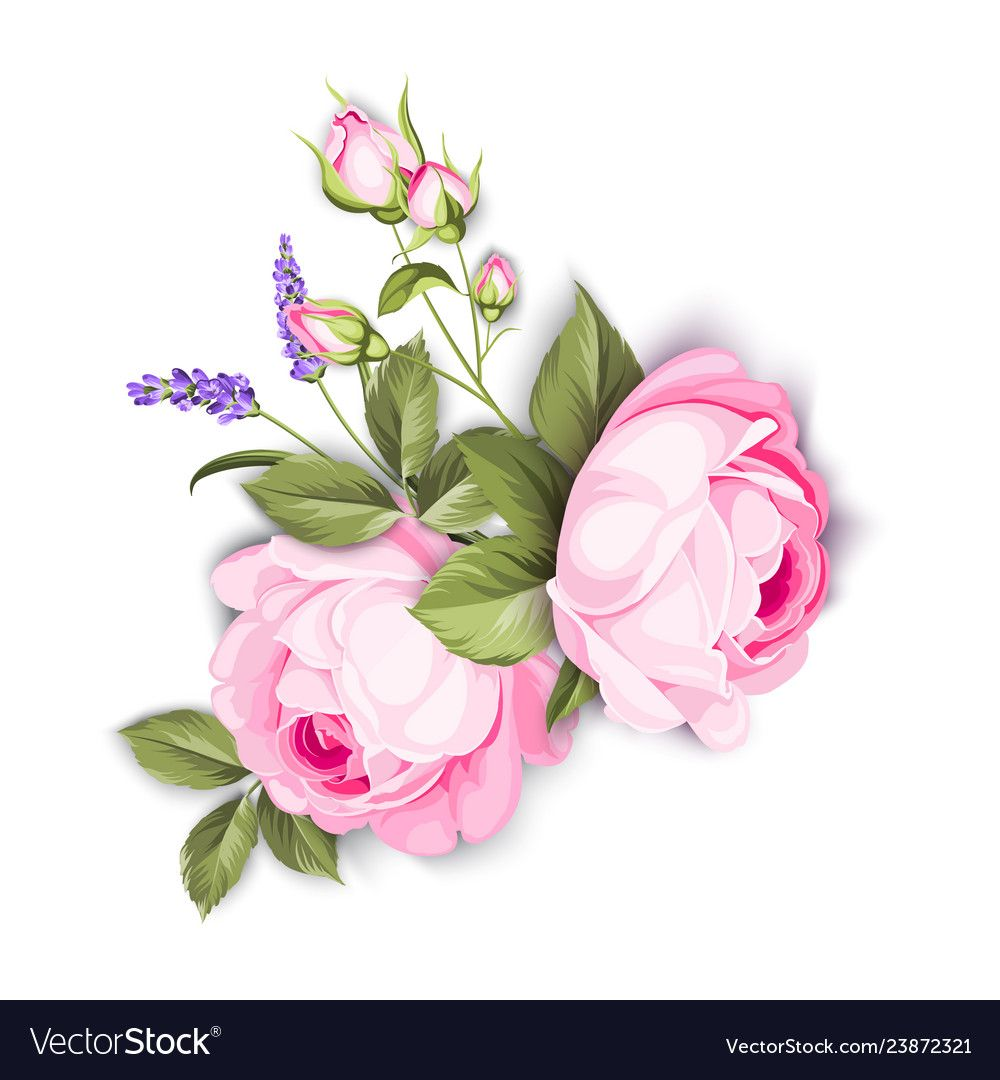 Wedding flowers bouquet of color bud garland vector image