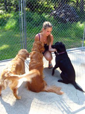 These Dogs Are Staying At A Kennel They Sure Seem To Like The Lady Who Is Taking Care Of Them I Bet That Dogs Love To Go To The Kenne Dog