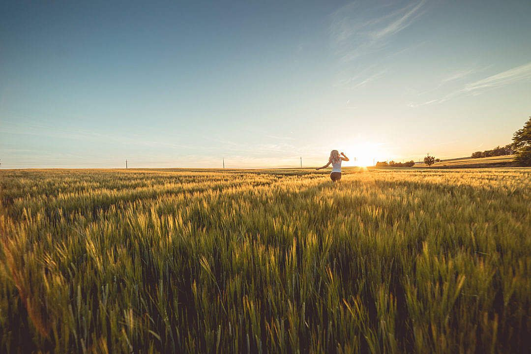 Download young woman running through wheat field on sunset