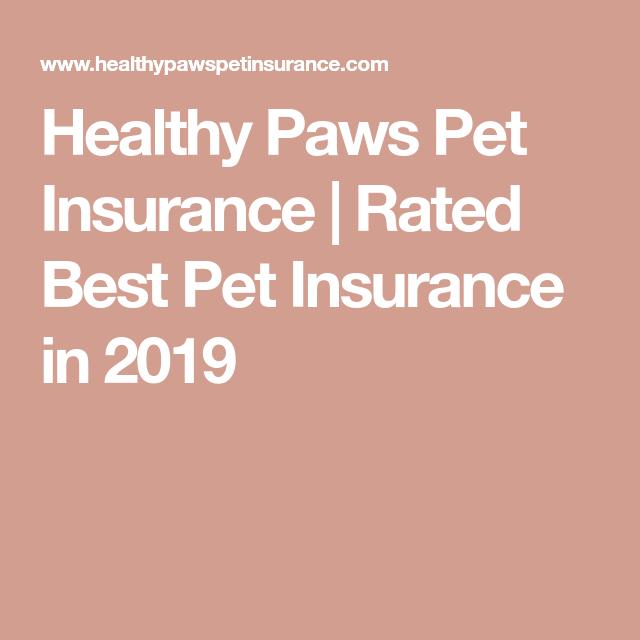 Healthy Paws Pet Insurance Rated Best Pet Insurance In 2019 With Images Pet Insurance Pet Insurance Dogs Best Pet Insurance