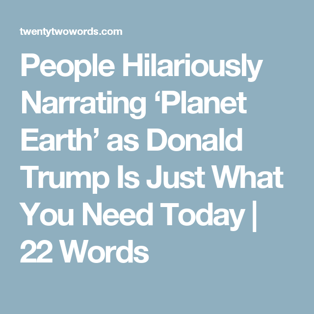 People Hilariously Narrating 'Planet Earth' as Donald Trump Is Just What You Need Today | 22 Words