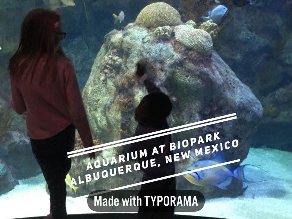 albuquerque botanical gardens and aquarium abq biopark albuquerque part one zoo aquarium botanical gardens heigh ho ho travelers we will go aquariums
