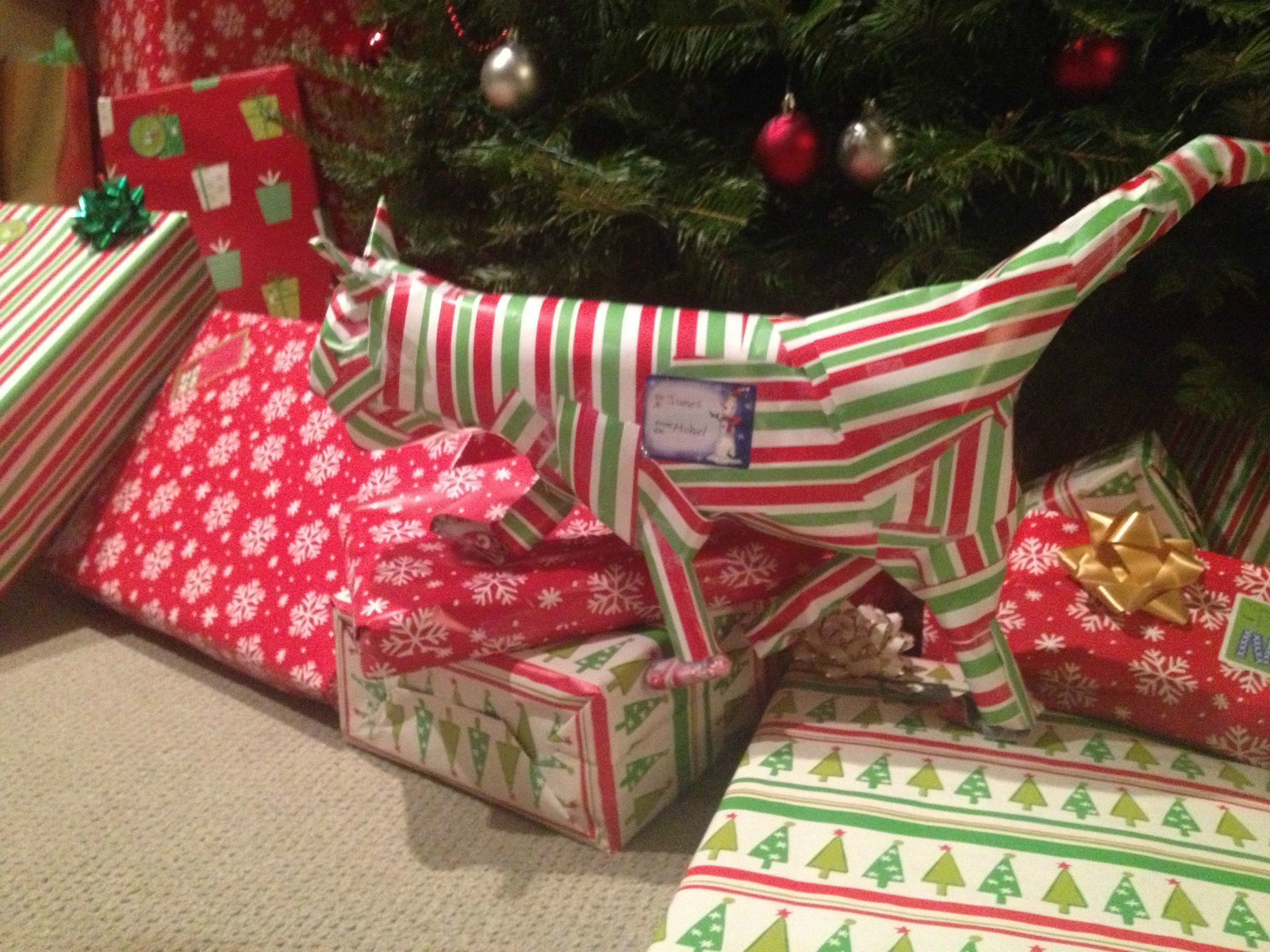 20 trolls who took gift wrapping to ridiculous extremes