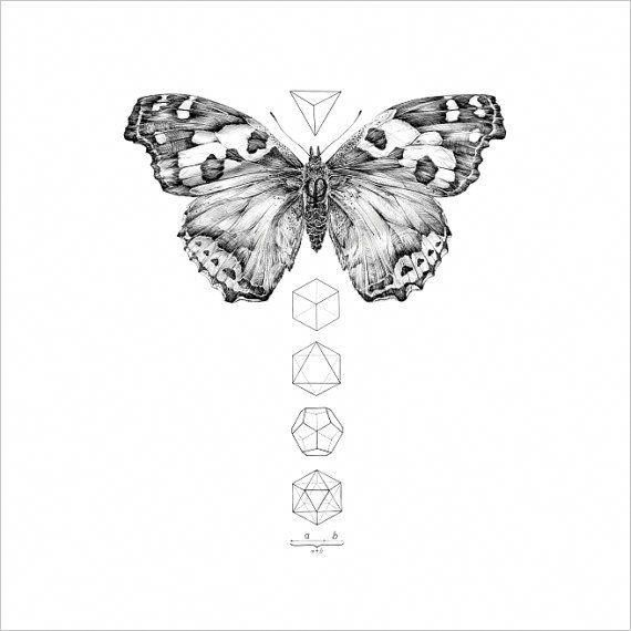 Realistic black-and-white butterfly and small geometric
