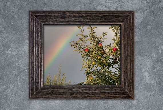 Transform her walls and transform her life. Mothers Day gift order deadline is coming up. Order Now at www.rogueauroraphoto.etsy.com. Orchard Rainbow  A #rainbow lights up over an apple #orchard in this nature art print. My home town of Orem, Utah is known for it's orchards. When I was a kid, there were orc... #wallart #mothersday #metalwallart #canvasart #homedecor #apples