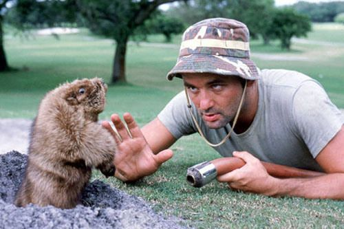 In the immortal words of Jean Paul Sartre, 'Au revoir, gopher.'