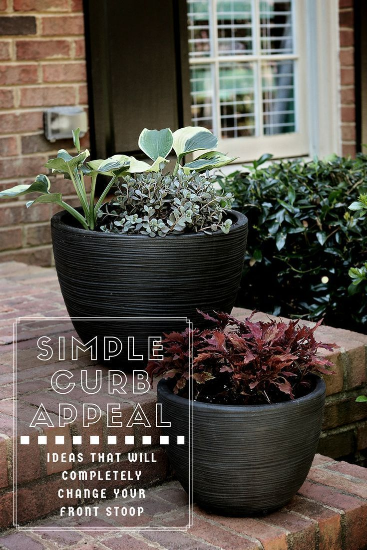 14 planting Outdoor curb appeal ideas