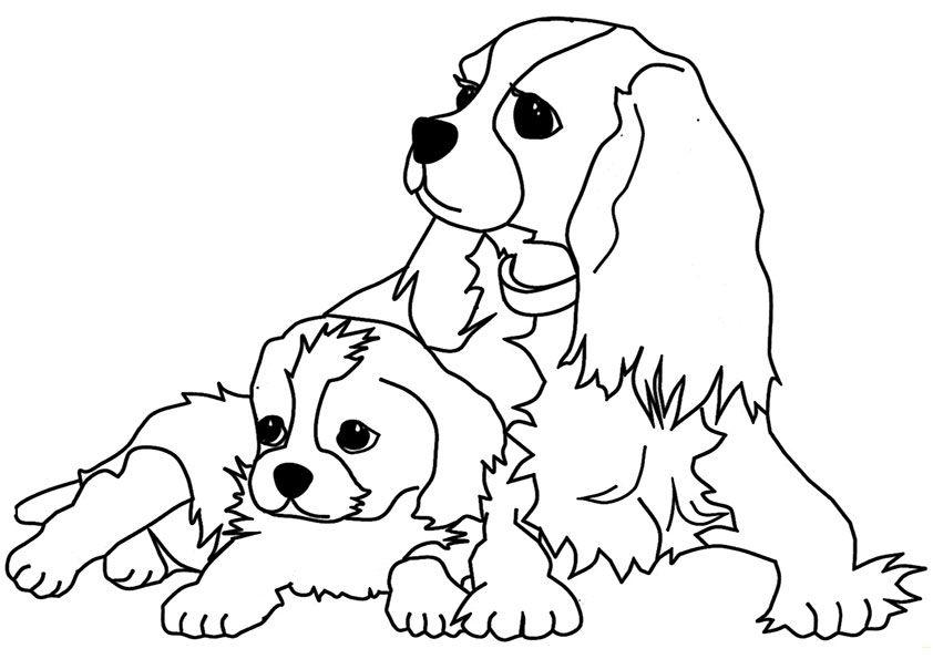 Ausmalbilder Hunde Ausmalbilder Hunde Ausmalbilder Hunde Ausmalen Ausmalbilder
