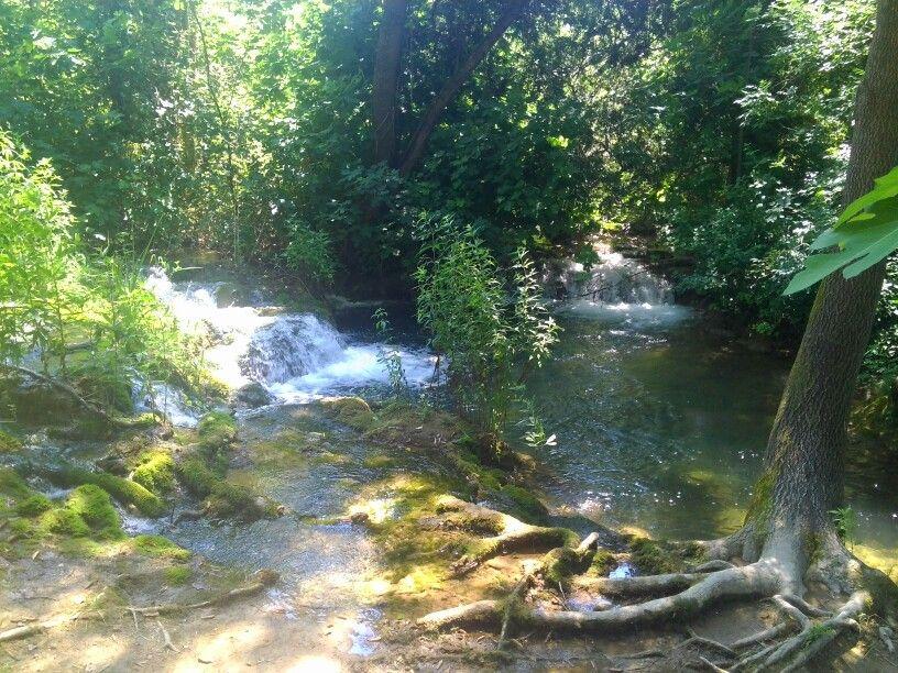 страна  водопадов