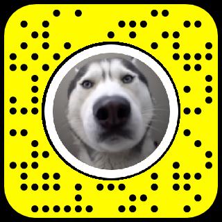 Tobias Dog Calling Snapchat Lens Filter Facetime Filter Lenses Snapchat Tobias Lens Filters Snapchat Filters