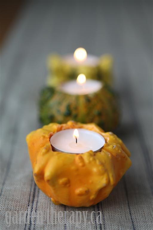 Your Friends and Family with these Simple yet Elegant Gourd Candle Holders Now here is a seriously last minute decor project that will bring a little garden to the table: ornamental gourd tealight holders.Now here is a seriously last minute decor project that will bring a little garden to the table: ornamental gourd tealight holders.