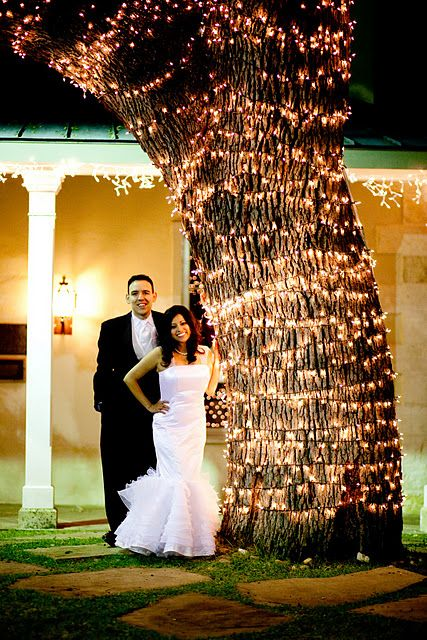 love the tree!!