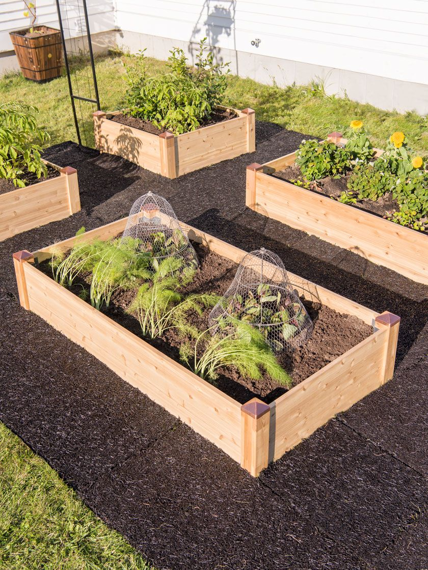 Copper Cap Cedar Raised Bed Kit Gardener S Supply Garden