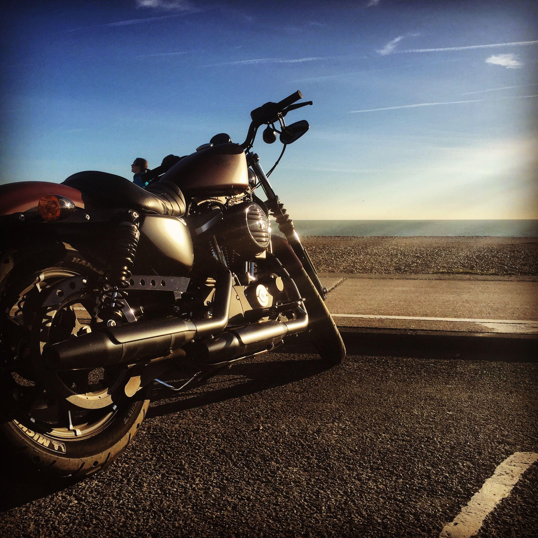 2017 Harley Davidson Sportster iron 883 in red iron denim