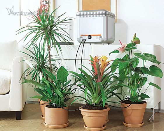 Claber Oasis Self Watering System 708775 With Images 400 x 300