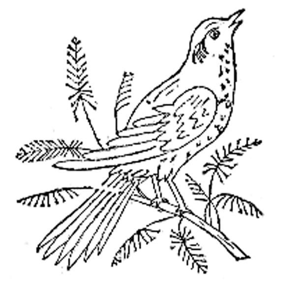 Free Bird Embroidery Pattern A Stitch In Time Pinterest Bird