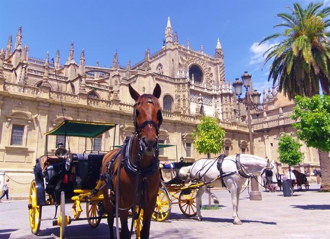 Mit Der Pferdekutsche Durch Sevillas Altstadt Gondeln Ein Wirklich Aristokratisches Gefuhl Sevilla Spanien Andalusien Andalusien