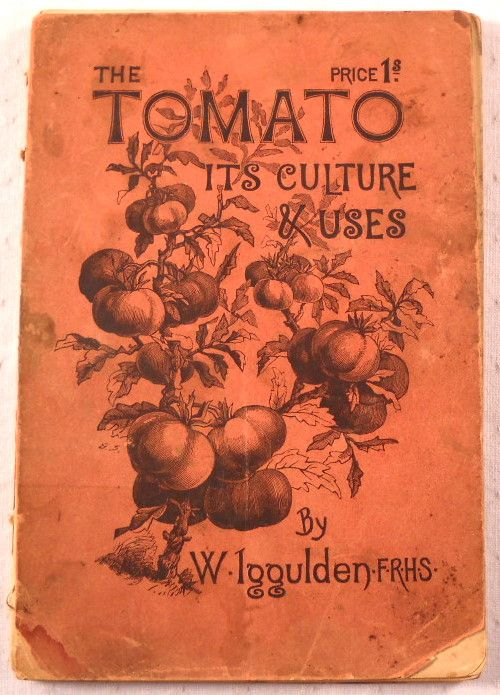 The Tomato: With Cultural Directions for Maintaining a Continuous Supply of Fruit