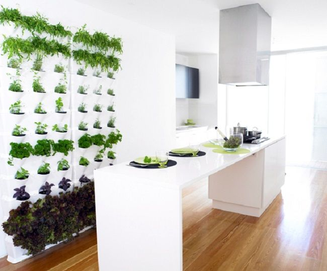 vertical mini herb garden made of recyclable polypropylene