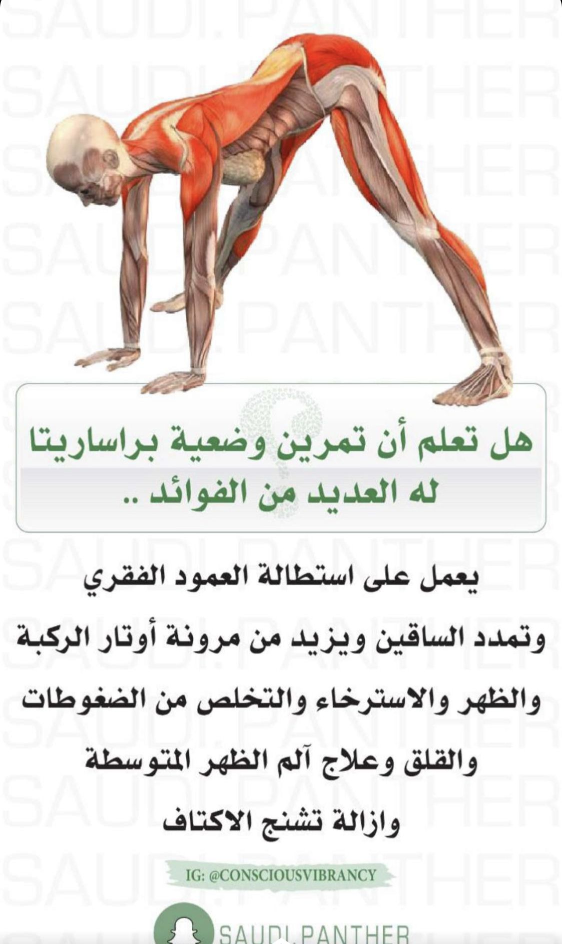 Pin By Imad Behiani On Workout Health Facts Fitness Health And Fitness Magazine Fitness Workout For Women