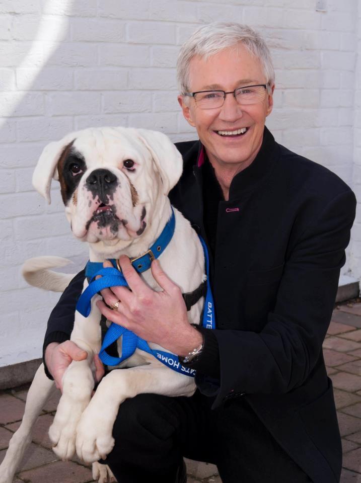 Paul O Grady Battersea Dogs Battersea Dogs Home Famous Dogs