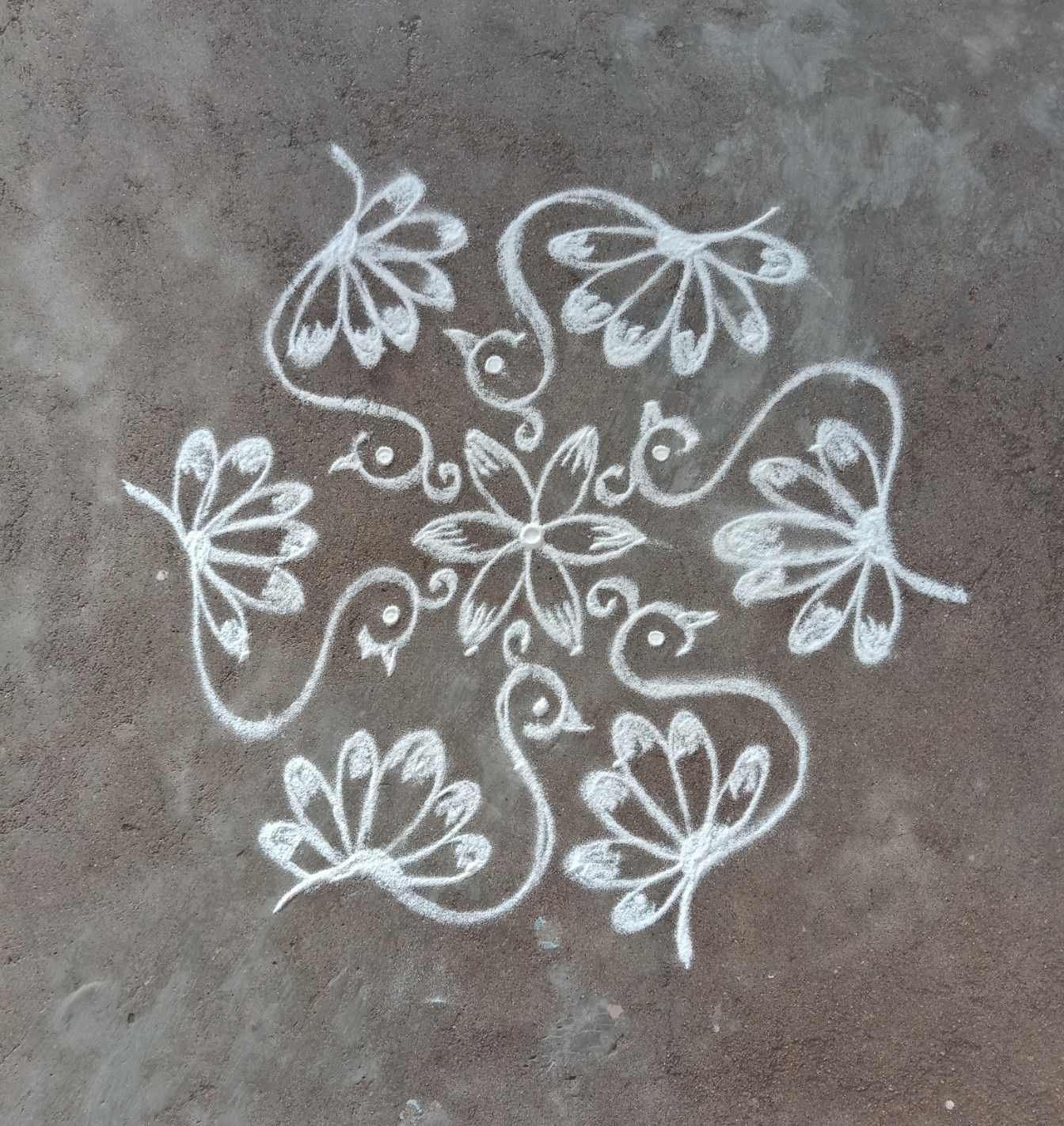Nisha's kolam Rangoli designs flower, Rangoli designs
