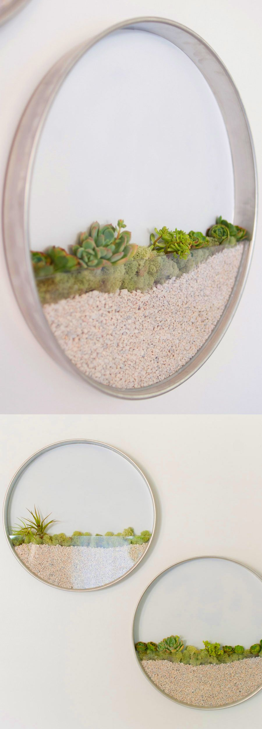 Circular Framed Planters Add Living Art To Your Walls Home Space - Cool diy wall planter