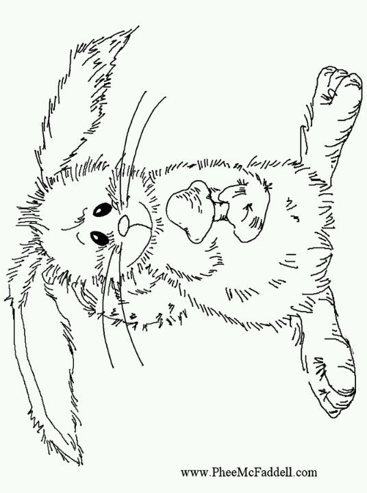 Find This Pin And More On Pfee McFaddell Artist By Gaugeie7 Phee Cute Bunny Free Coloring Page
