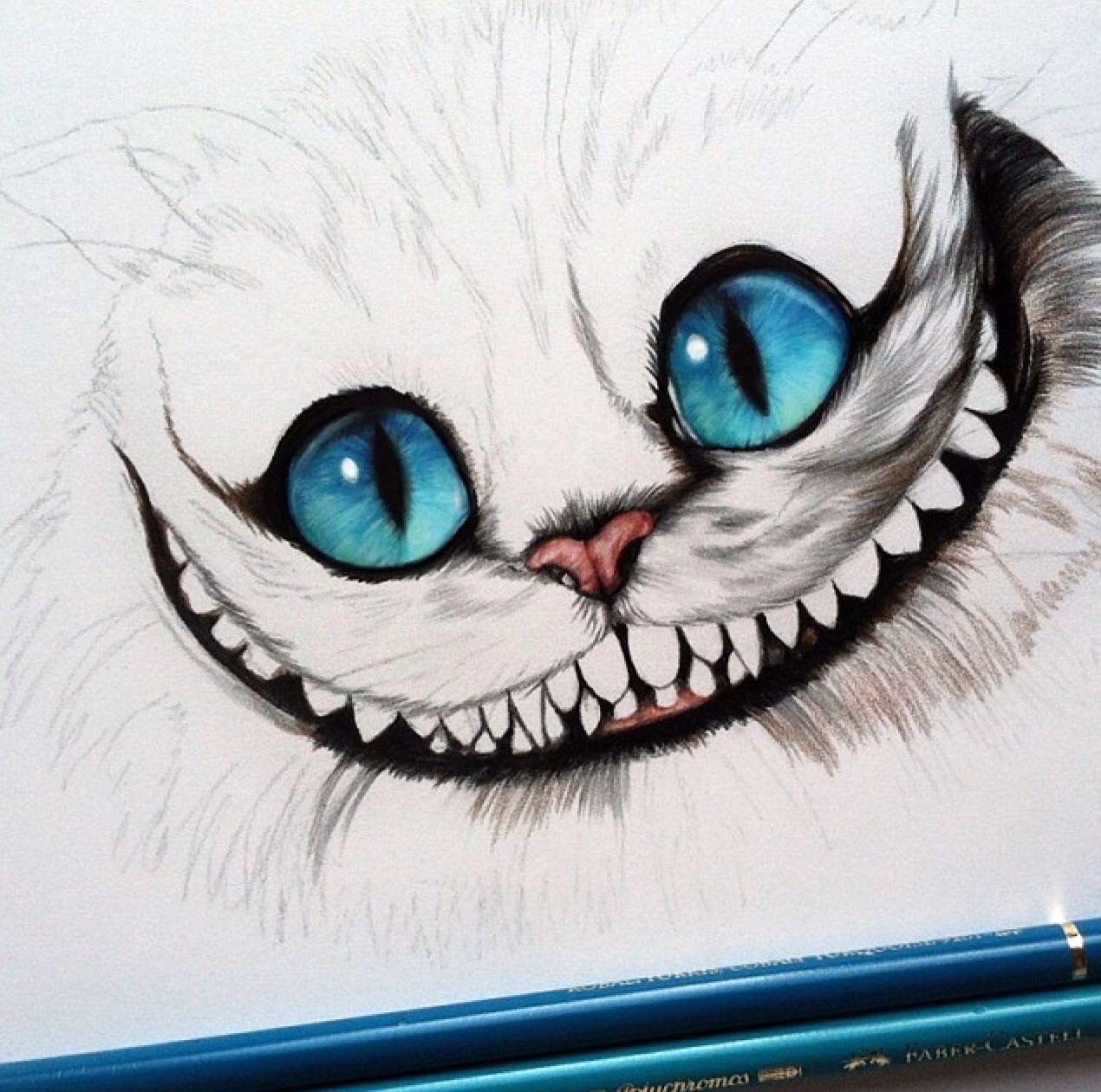 Pin Von Ladina Iten 56 Auf Zeichnen Katze Zeichnen Zeichnungen